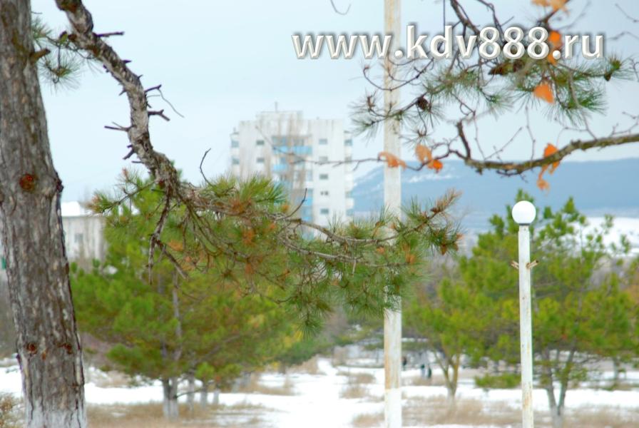 gallery_6143_18_215522.jpg